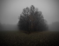 Fog, delusions