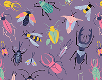 Midsummer Fairies Pattern Collection