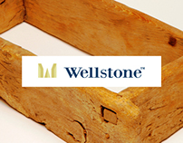 Wellstone - Brand Identity