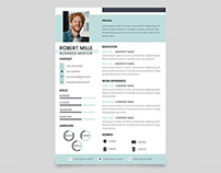 Free Business Mentor Resume Template