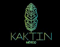 kaktin logo