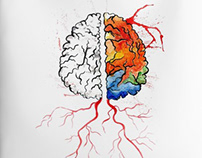Rainbow human brain