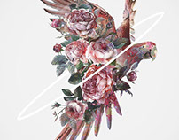 Surreal Illustrations Of Women And Birds