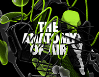 Nike Anatomy of Air