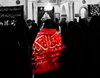 visitor of lady zainab
