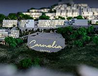 Carnelia