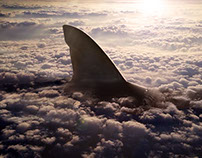 shark in the sky