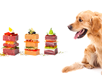 Dog food photograph | foodography