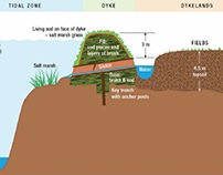 Acadiecology: Reinventing Upland Water Management