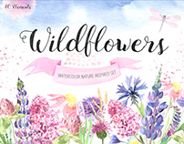 Watercolor Field Wildflowers Floral clipart Set