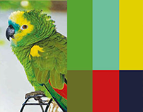 La natura e i suoi colori