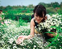 Ghé đến làng hoa nổi tiếng lẫy lừng đất Hà Thành
