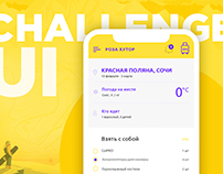 Ui Challenge