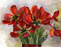 Tulips                         water-colour still-life