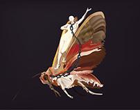 lady riding a moth