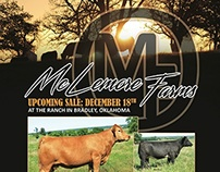 McLemore Farms - Winter 2015 Sale Ad
