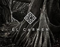 El Carmen. Grupo Proyecta
