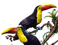 Yellow-throated Toucans Digital Painting