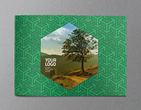 Eco Modern Green Pattern Brochure