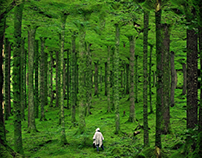 Photoshop landscape manipulation Tutorial