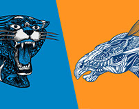 Panthers vs Broncos Superbowl 50