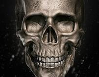 Skull Madness - 3D Modeling