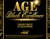 Age of Black Excellence
