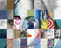 Create Shakespeare / Graphis Silver Award 2017