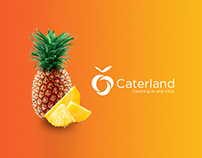 Caterland-catering in one click