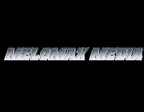 Custom Original Animated Logos
