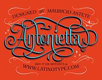 Antonietta Type System