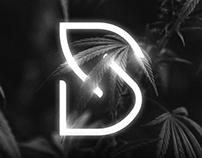 Definitive Seeds - Identidade Visual