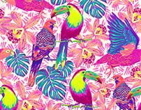 JUNGLE - Swimwear prints and patterns OFFCORSS