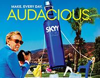 SKYY Vodka Campaign