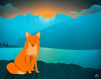 Fox on the coast