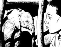 Elephant rescue story.
