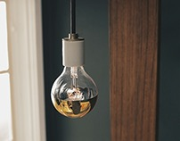 Gold Globe , Teak Wood Wall Lamp