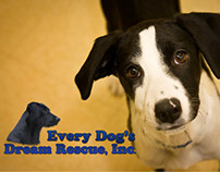 Every Dog's Dream Rescue, Inc Collateral