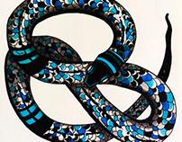 Culebra, serpiente.