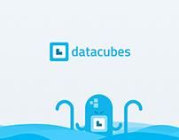 DataCubes