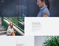 Partner - Professional WordPress Theme by TommusRhodus
