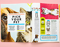 Pick Your Pet Feature for San Diego Pets Magazine