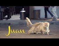 Petz - Juan O Galanteador