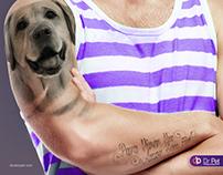 Campanha Dr Pet B2C