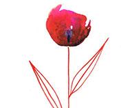 Seven days, seven artworks... one flower for each day