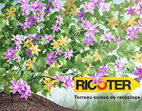 Ricoter