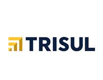 Portal Trisul Incorporadora
