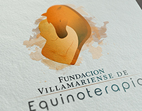 Logo Design Equine foundation