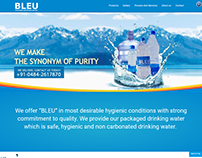 Bleu Website Design