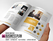 Entrepreneur Business Plan Template